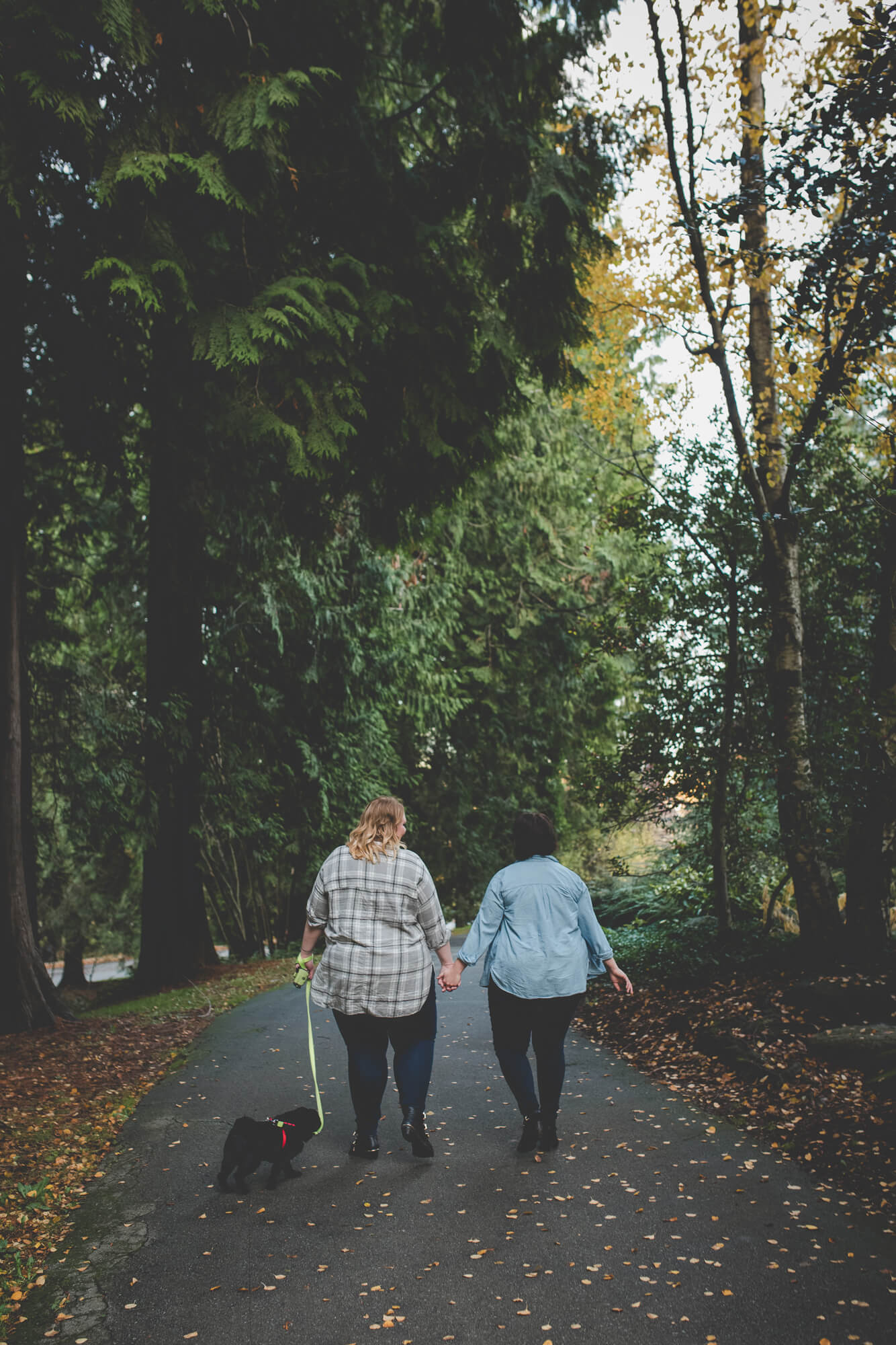 same sex couple and their black pug puppy hold hands and walk down path | fall engagement at Queen Elizabeth Park | Vancouver same-sex wedding photographer
