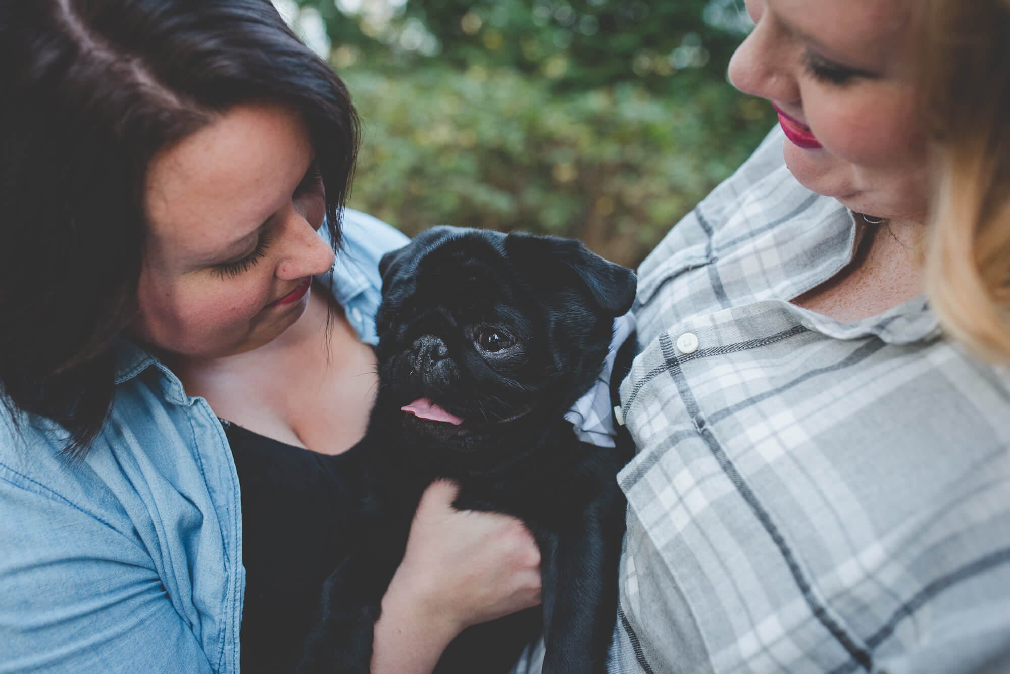 black pug puppy in group hug with mamas | fall engagement at Queen Elizabeth Park | Vancouver same-sex wedding photographer